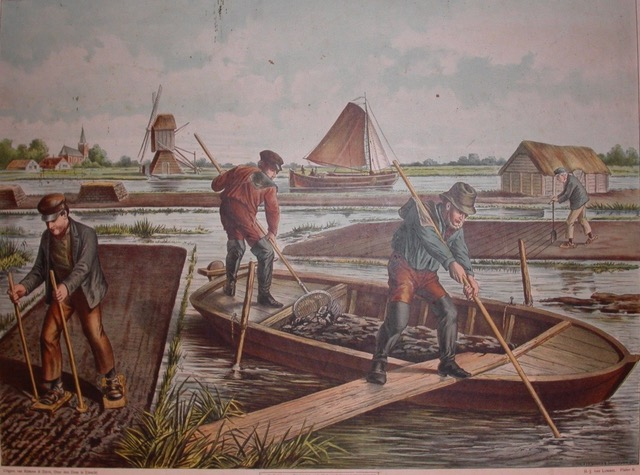 Dutch peat cultures