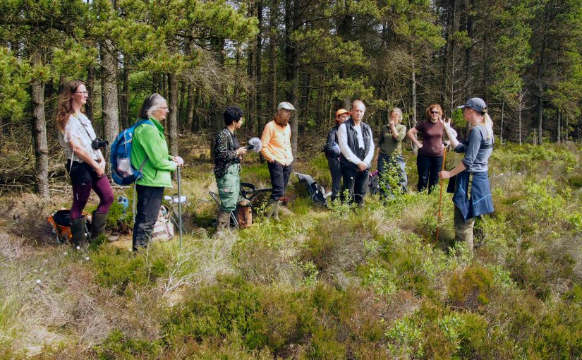 Peat Cultures Workshop at Knowetop Lochs,Galloway.