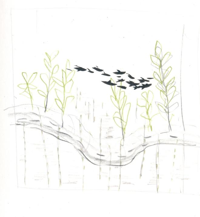 starling-swoosh.jpg